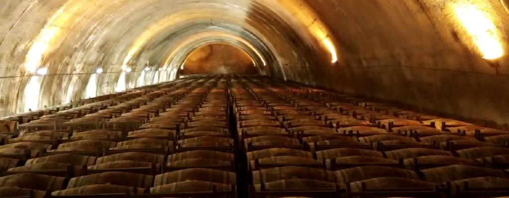 Enoturismo y gastronomía en Rioja Alavesa