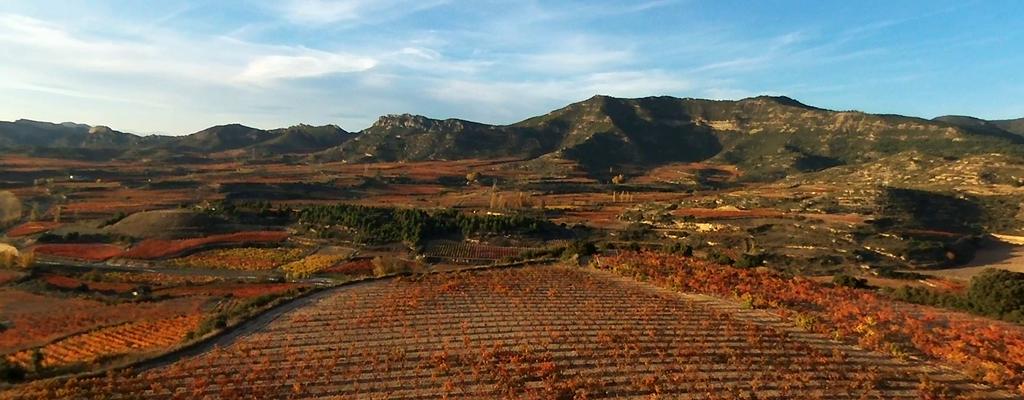 Actividades de aire en Rioja Alavesa