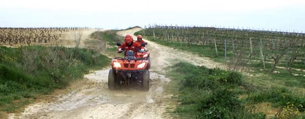 Ruta en quad en Rioja Alavesa