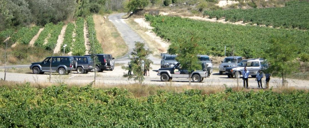 Eventos en Rioja Alavesa y Rioja Alta
